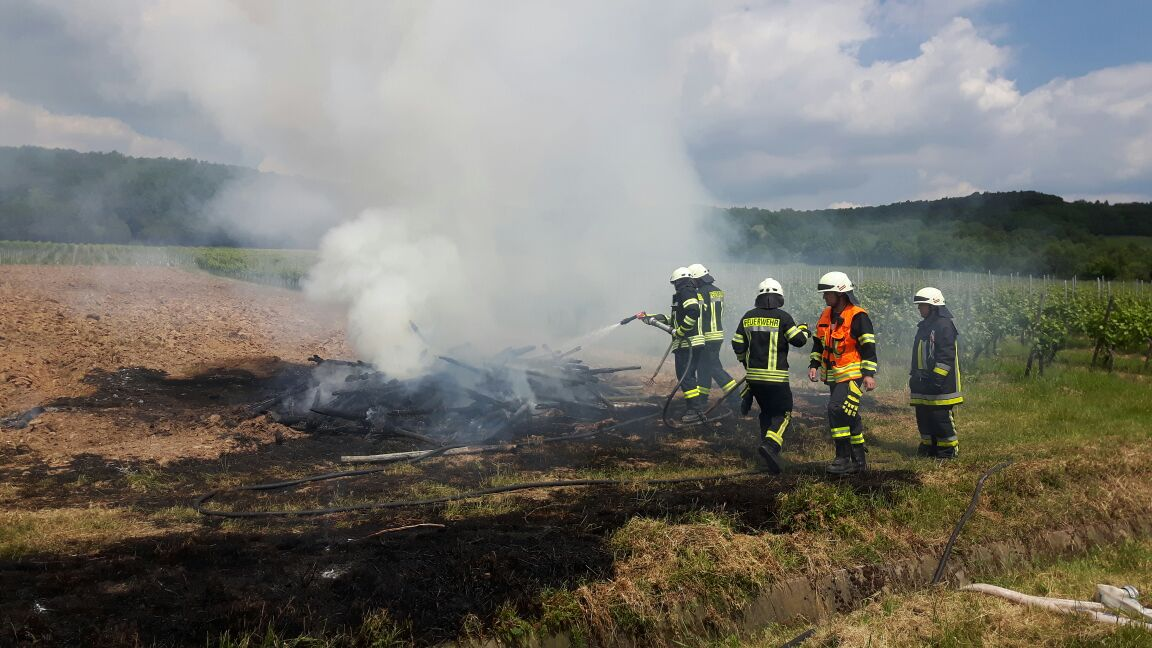 Einsatz 01.06.2017 Feuer in den Weinbergen Oestrich-Winkel